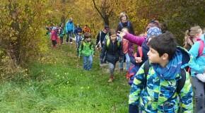 Herbstspaziergang ins Lange Tal